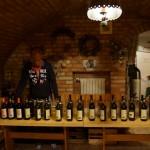 16 Víno Borik