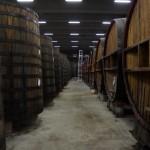 Zanin Distillery (18)