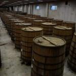 Zanin Distillery (42)