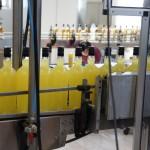Zanin Distillery (45)