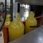 Zanin Distillery (46)