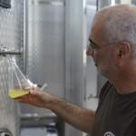 Zanin Distillery (56)