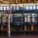 Zanin Distillery (65)