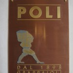 Poli-031