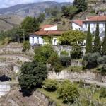 Quinta do Panascal-012