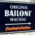 Bailoni2