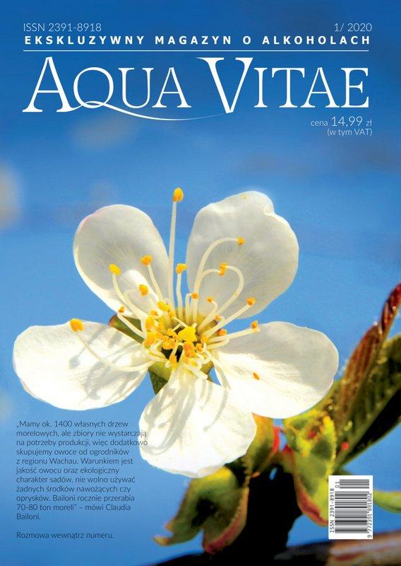 AV_cover 31